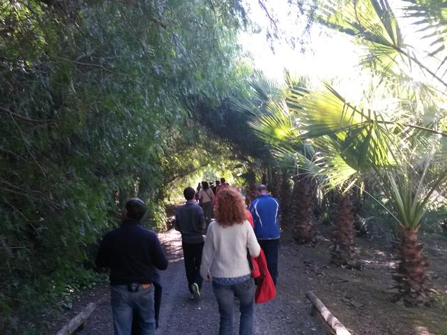 Ruta interpretativa a pie por el Vivero del Alamillo