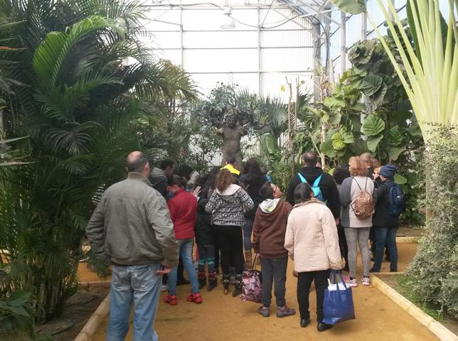 Grupo visitando el invernadero con su escultura del Hombre-árbol