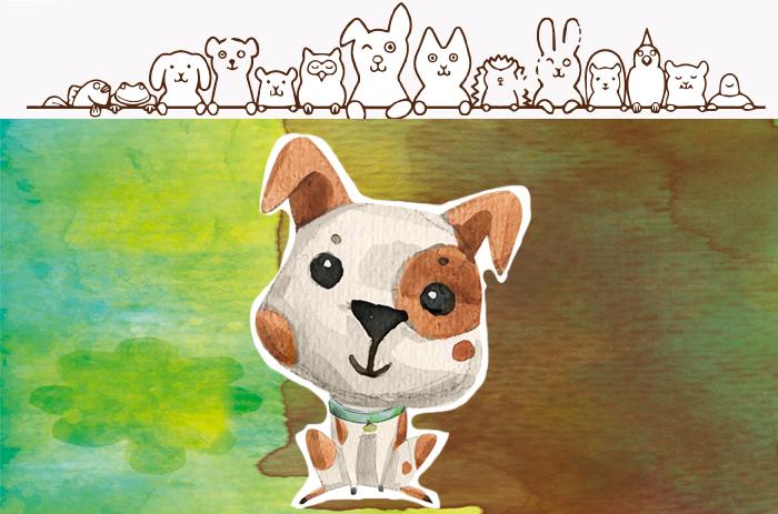 Campaña de concienciación del cuidado de animales