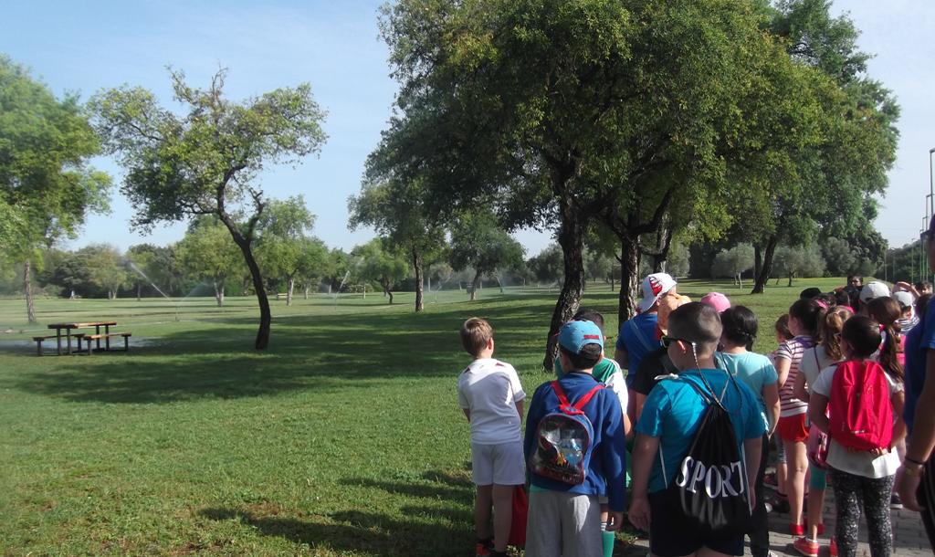 Excursión por el Parque del Alamillo y visita a su vivero