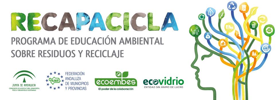 Curso RECAPACICLA Universidad Pablo de Olavide 2019-20
