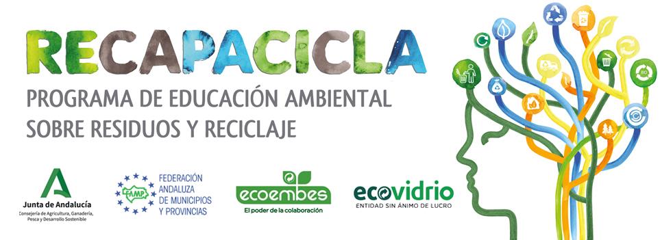 Curso RECAPACICLA Universidad de Sevilla 2019-20